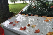 car with fall leaves