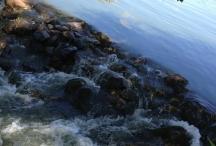 dam rocks