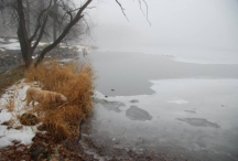 December melt