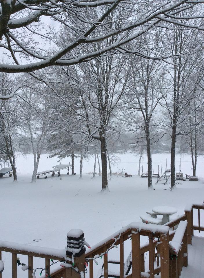 winter yard 2